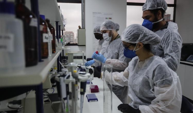 Hay más de 20 desarrolladores de vacunas en todo el mundo en la actualidad. EFE