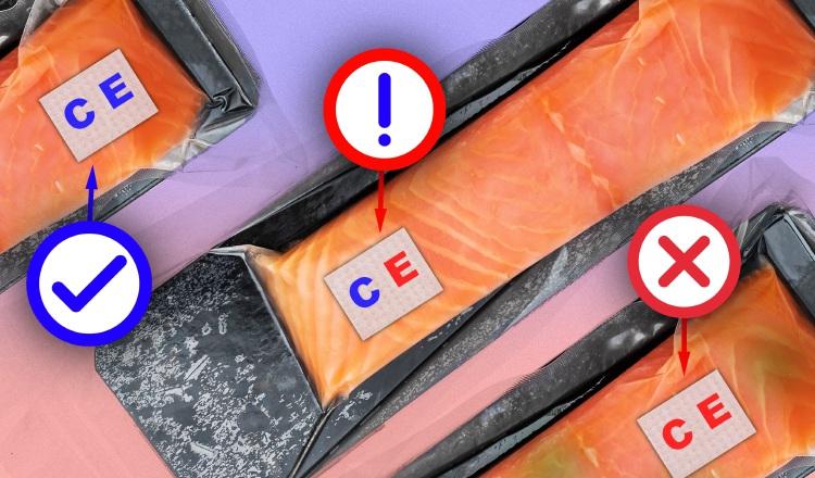 Los investigadores sujetaron el sensor a un filete de pescado crudo contaminado con E. coli.