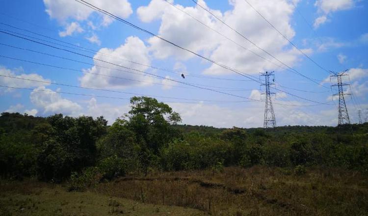 El proyecto contempla la instalación de 900 torres a lo largo de 330 kilómetros, en el norte del territorio nacional. Cortesía