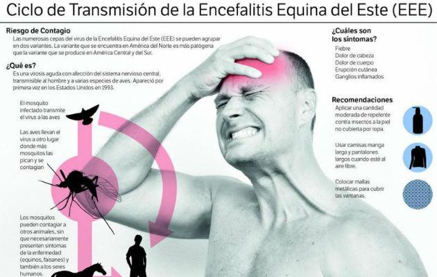 Ministerio de Salud declara alerta sanitaria por brote de Encefalitis Equina en Darién. Foto: Panamá América.