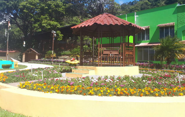 Los jardines están a su máxima floración, lo cual llama la atención de las personas que visitan la feria en Boquete, Chiriquí.