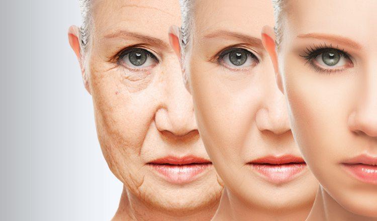 Es una posible alternativa de tratamiento para las mujeres menopáusicas. Fotos: Web
