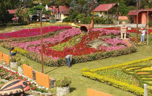 Feria de las flores y el caf ser del 12 al 22 de enero for Jardines verticales panama