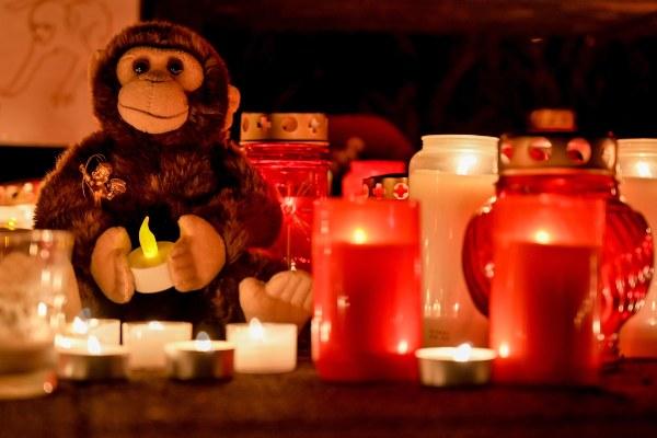 Las personas colocaron velas y peluches en el área del zoológico en el que ocurrió el incendio. FOTO/AP