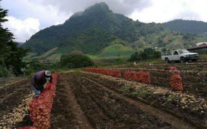 Los productores plantearon problemáticas y soluciones para sectores como arroz, pesca, ganado y palma aceitera.
