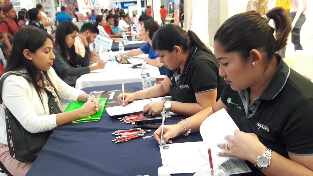 Este proyecto facilitará la obtención del primer empleo a jóvenes de entre 17 y 24 años. Foto/Archivo