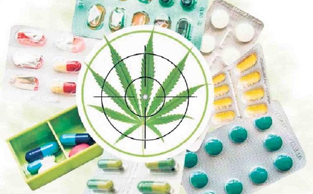El cannabis tiene propiedades curativas para la epilepsia, esclerosis múltiple y convulsiones, entre otras morbilidades.
