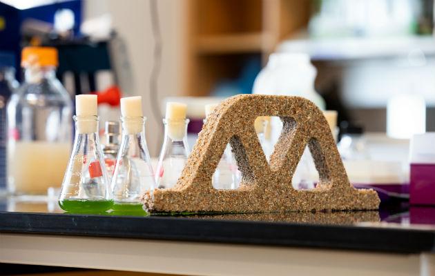 Un arco hecho de material de construcción viviente, que usa microbios para generar carbonato de calcio. Foto / Facultad de Ingeniería y Ciencias Aplicadas de la Universidad de Colorado.