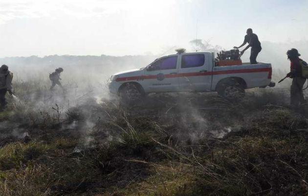 Los incendios de masa vegetal  afectan a las personas, la flora y fauna.