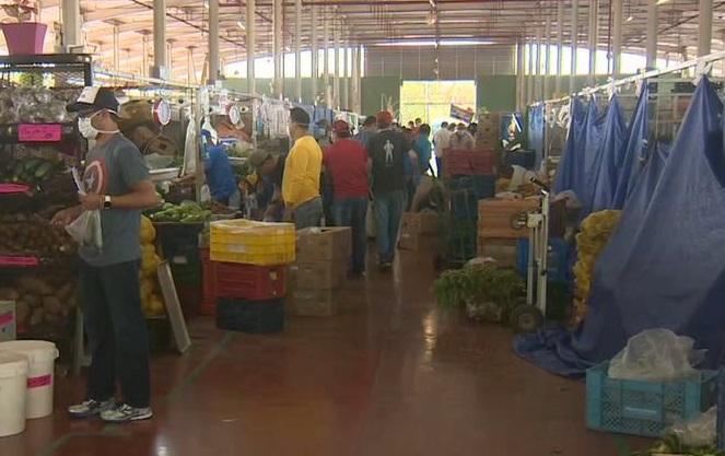 Todos los días se envía a Merca Panamá un total de 1,000 a 1,500 naranjas.