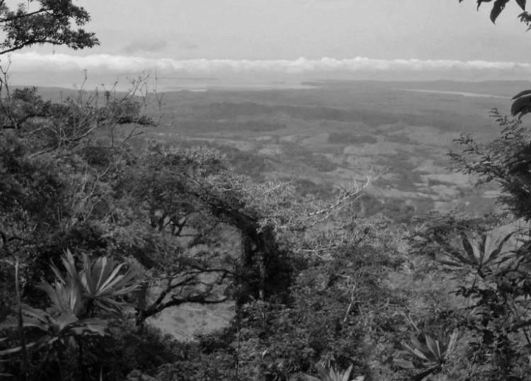 El establecimiento del mejor parque ecológico mundial en la cima del cerro Pechito Parao, en Darién, atraería decenas de millones de visitantes. Foto: Archivo.