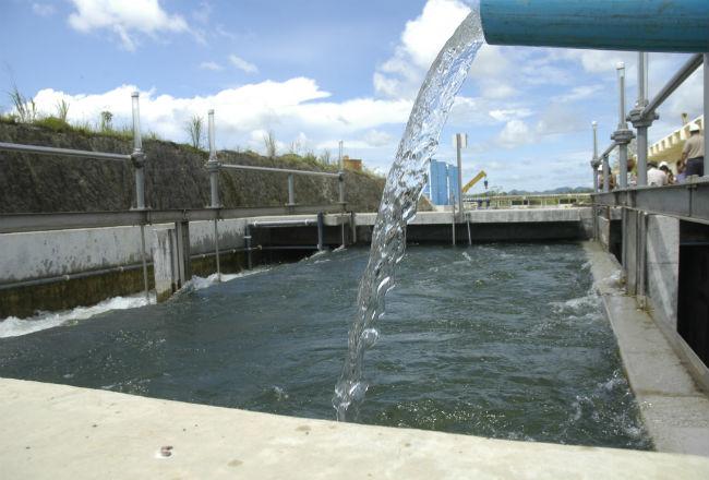 El Idaan recomendó a las personas abastecerse de agua.