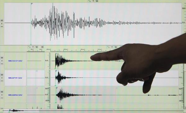 Asimismo, el Instituto recibió reportes de que el temblor se sintió en las provincias de Manabí, Santo Domingo de los Tsachilas, Bolívar, Tungurahua y Esmeraldas. FOTO/EFE