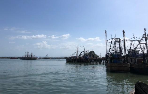 Por otro lado se informó que las estadísticas de exportación al mes de marzo de 2020 en la industria pesquera y en la acuicultura muestran resultados positivos en algunos los productos como lo son los camarones con B/. 4.4 MM con un incremento del 45 %.