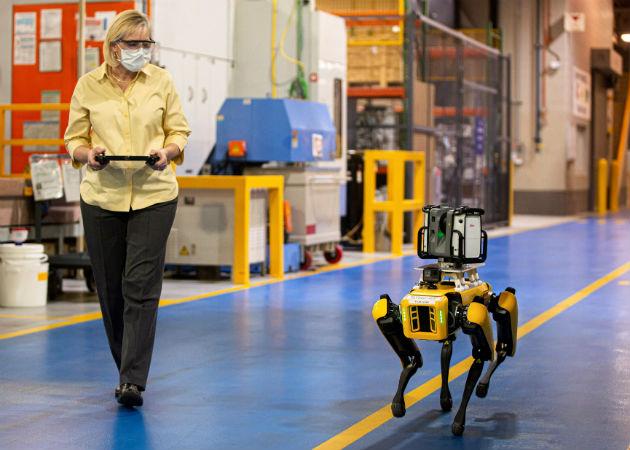 Los dos robots han sido llamados Fluffy y Spot, nombres comunes de perros en EE.UU. Fotos: EFE.