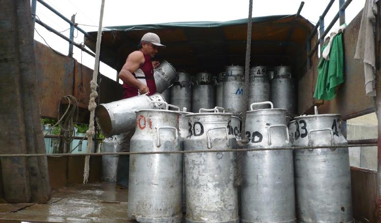 La industria de lácteos en el mundo está compuesta de 1,000 millones de personas. Archivo