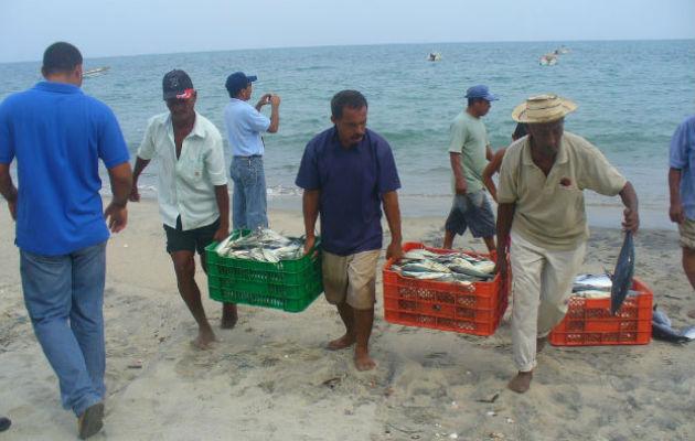 La norma actualizará la pesca, la acuicultura y las actividades conexas de la República de Panamá.