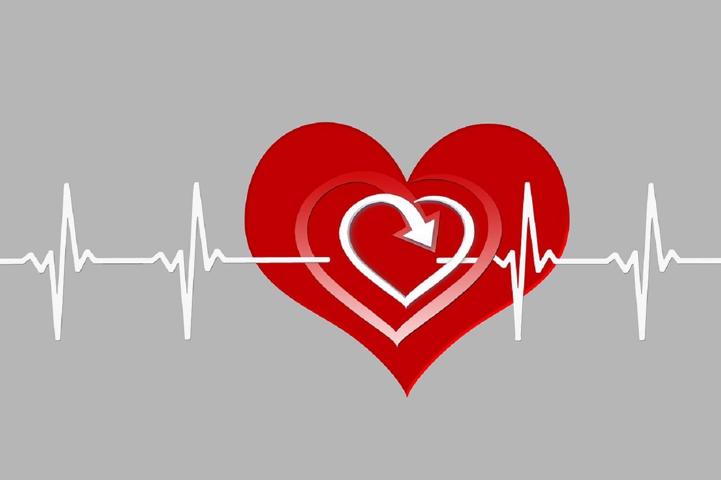 El corazón es el músculo más fuerte del cuerpo.  Pixabay