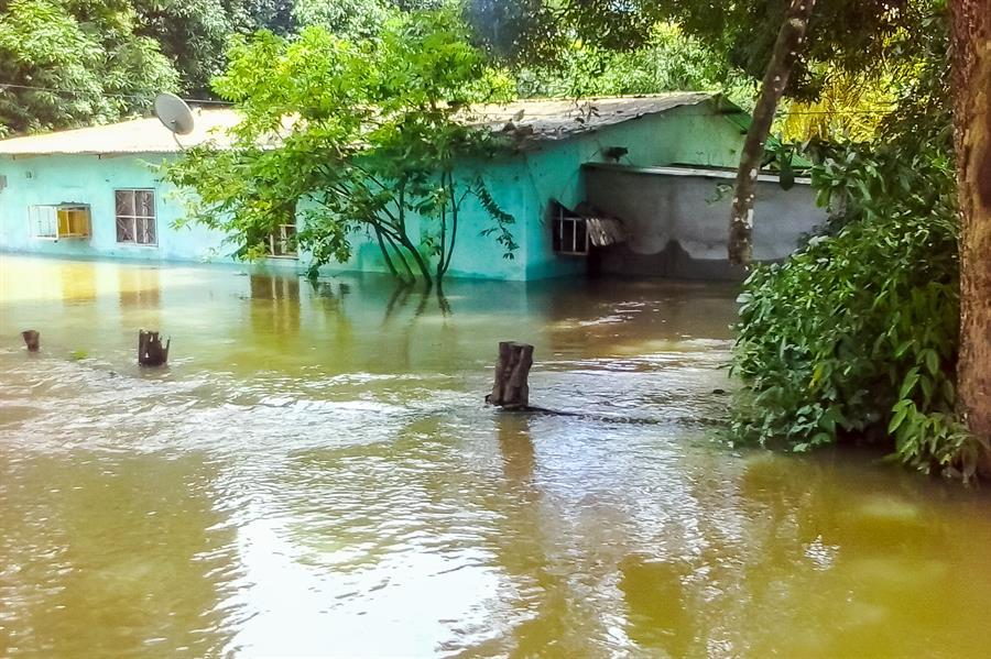 Estas cuatro localidades, pertenecientes a la capital regional Maracay, albergan a más de medio millón de habitantes y han registrado otras inundaciones este año debido al desborde de ríos, siempre antecedido por intensas precipitaciones.