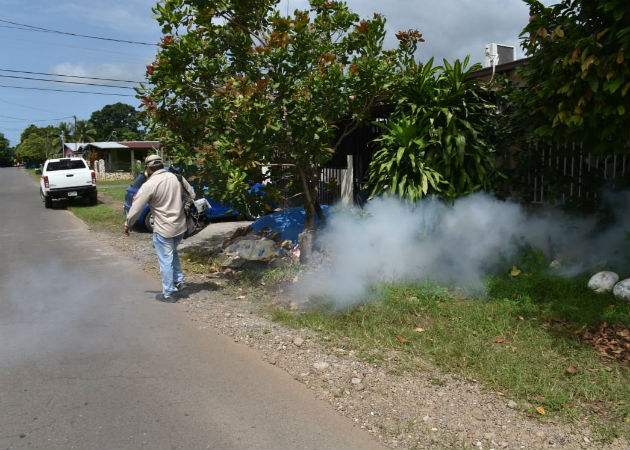 El nivel de infestación del mosquito en Chiriquí está por encima del 3%. Foto: José Vásquez.