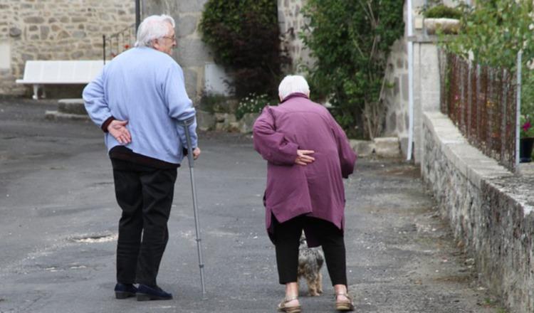Consumo de lácteos y calcio en adultos mayores. Pixabay
