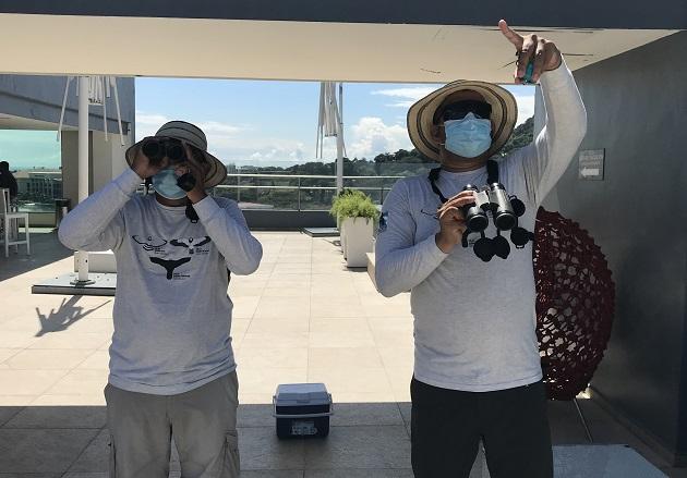 Domiciano Alveo (izq.) y Ovidio Jaramillo cuentan las aves rapaces desde la azotea del Wyndham Panama Albrook Mall Hotel. Foto: Elisinio González G.