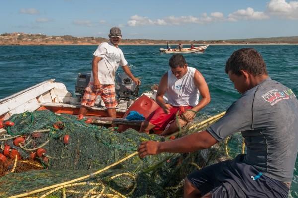 La nueva ley de Pesca fue aprobada por mayoría en la Asamblea Nacional el pasado jueves 29 de octubre.