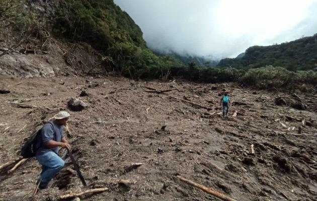 Técnicos y guardaparques del Parque Nacional Volcán Barú han evaluado los daños. Foto: José Vásquez.