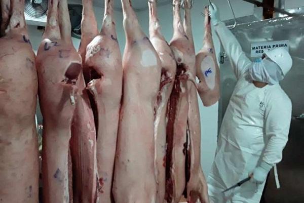 En otros sectores de la provincia de Chiriquí, las bolsas contenían codillo y hasta patas de cerdo.