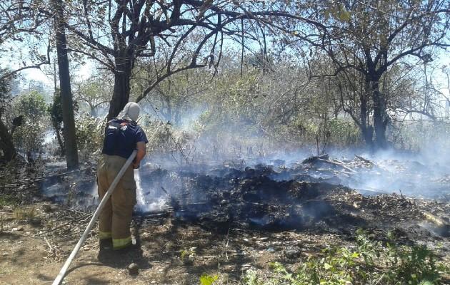 El tema de los incendios forestales durante la temporada seca se registra con mucha frecuencia, pero no sólo de masa vegetal en áreas protegidas; sino también en área urbanas donde se inicia con quemas de basura que pueden extenderse y acabar con grandes bosques.