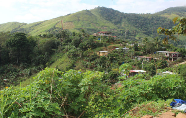 Los sitios donde se están asentando estas familias, son áreas de cobertura boscosa o de protección forestal. Foto: Eric A. Montenegro.