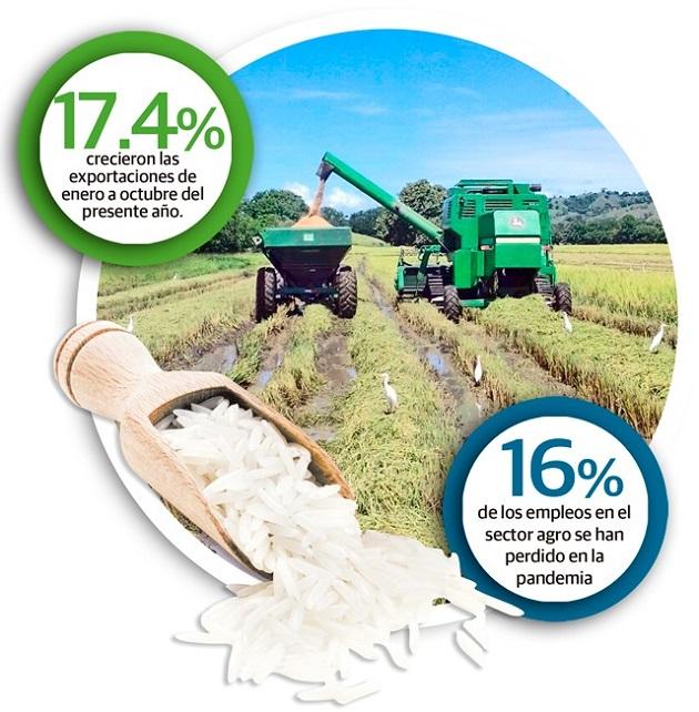 Los productores reconocen que la producción ha aumentado con respecto al año pasado. Sin embargo, aseguran que se debe hacer mucho más para estar en los niveles óptimos de años atras.