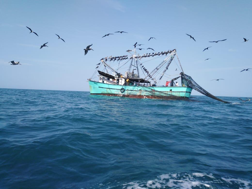 Capitanes de barcos llenarán bitácoras de pesca a partir de este año 2021. Foto: Cortesía.