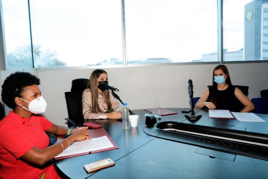 La Comisión de la Mujer nombró una subcomisión.