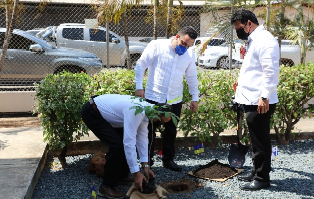 Para recordar a las víctimas de la coivd-19 se sembró un árbol de guayacán.