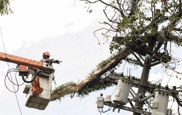 El subsidio eléctrico por pandemia ha costado más de 200 millones. Foto: Grupo Epasa