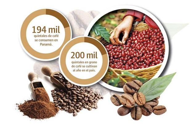 En el mercado panameño puede ingresar café de cualquier país y hay mucho influencia de Suramerica y Centroamérica.