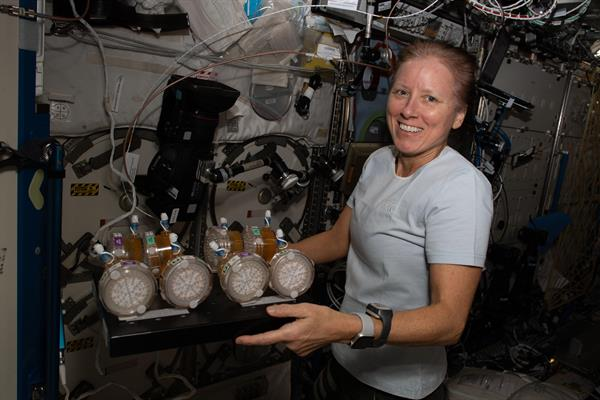 Fotografía cedida por la NASA donde aparece la astronauta estadounidense Shannon Walker, de la tripulación de la llamada SpaceX Crew-1 mientras trabaja en la Estación Espacial Internacional.
