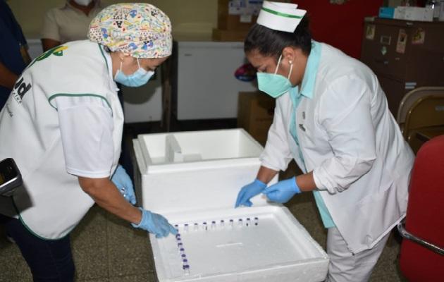 A Chiriquí llegaron 978 dosis de la vacuna de la farmacéutica Pfizer, con la cual se pretende culminar la segunda aplicación de la fase uno. Foto: José Vásquez