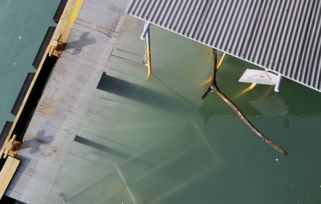 Muelle de Amador ya fue habilitado. Foto: Cortesía