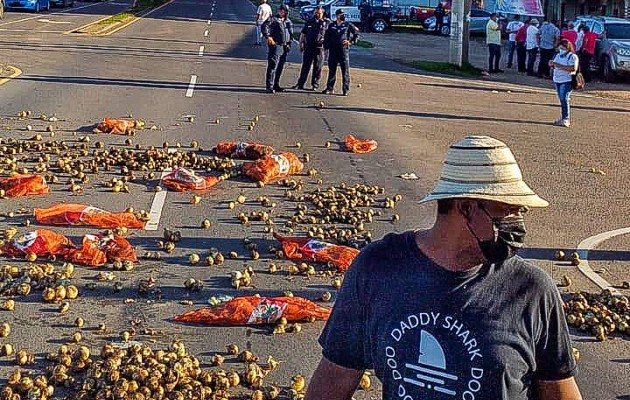 Los cebolleros tiraron gran cantidad de su cosecha dañada en la calle. Foto: Cortesía