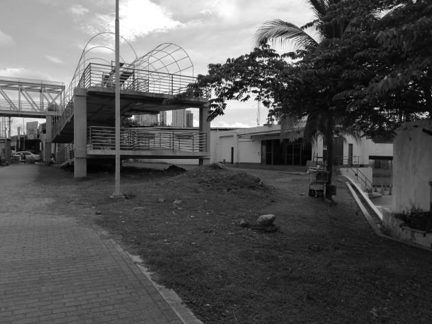 """Crear jardines en esta vía puede potenciar a la Ciudad de Panamá como un país verde """"Eco – friendly"""". Foto: Emilze Evans. Cortesía."""