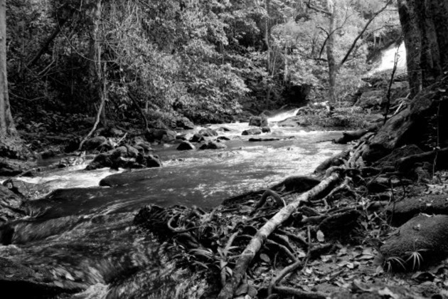 La hábil administración de las aguas se convierte en un tema de urgente prioridad nacional. Foto: Freepix.