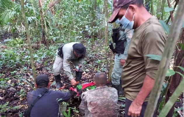 La aprehensión se logró durante un patrullaje por el sector de Cerro Hormiguero, corregimiento de Burunga, distrito de Arraiján. Foto: Eric Montenegro