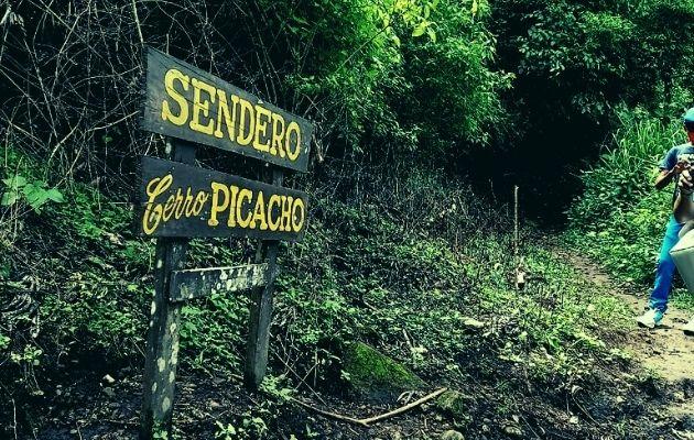 El recorrido por el Cerro Picacho puede tomar unos 40 minutos a una hora. Foto: Miriam Lasso
