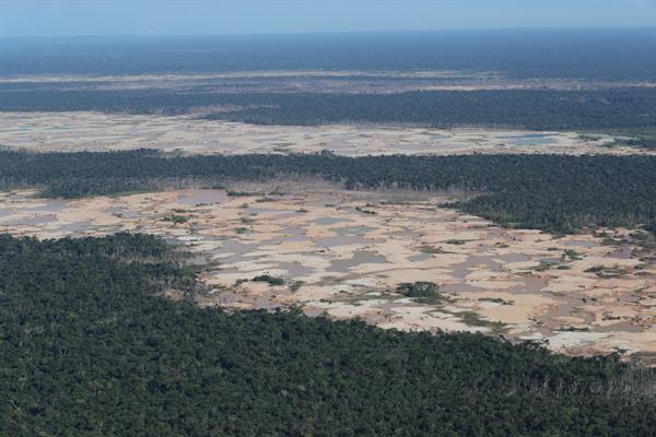 Fotografía aérea que muestra la Amazonía peruana. Foto: EFE