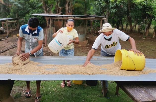 Al proyecto se ha incorporado la comercialización de cultivos, para que las familias obtengan ingresos económicos propios. Foto: Cortesía Mides