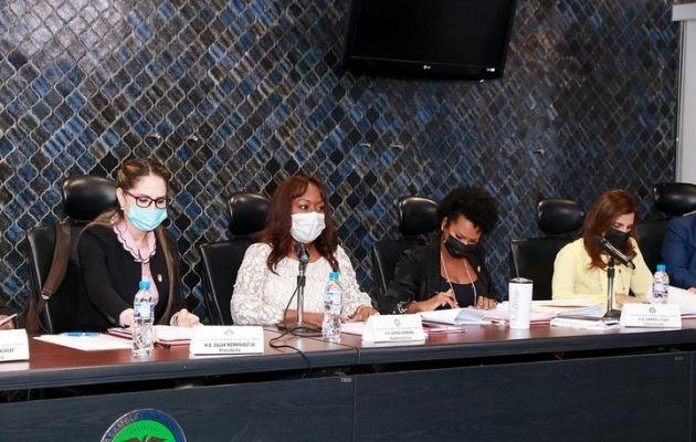 Comisión de la Mujer, la Niñez, la Juventud y la Familia, de la Asamblea Nacional.
