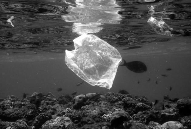 Si no se toman medidas para reducir el flujo de plásticos hacia el mar, los océanos contendrán más plástico que peces al llegar el año 2050. Foto: EFE.
