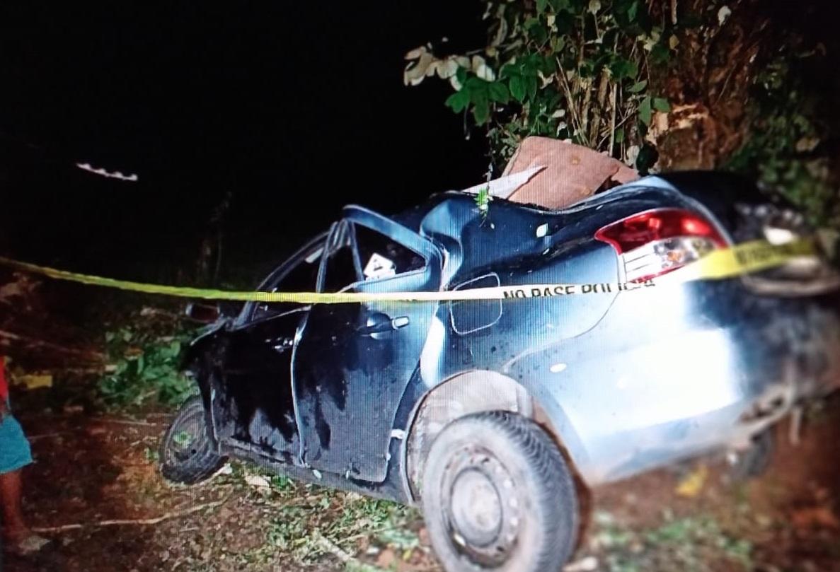 El vehículo se salió de la vía y colisionó contra un árbol. Foto: Eric A. Montenegro